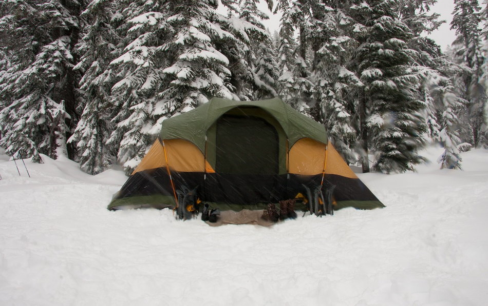 why-is-shelter-needed-for-survival