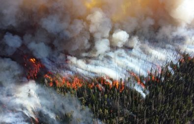 preparedness-kit-for-wildfires-what-you-must-include