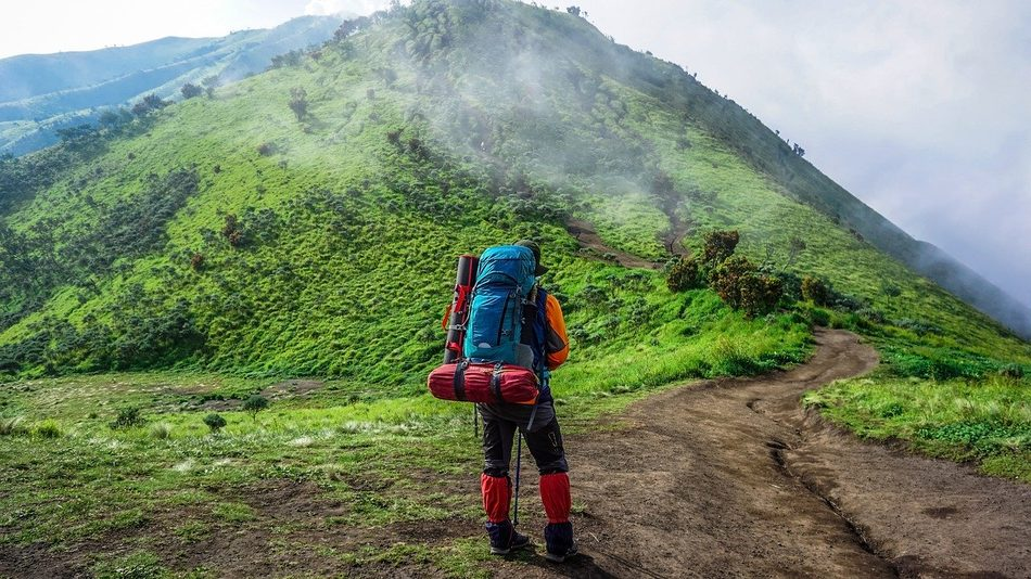 backpacker guide